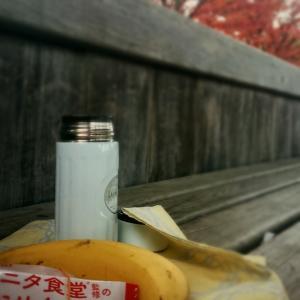 ベンチプレスフォーム矯正【ジムトレ公園トレ】