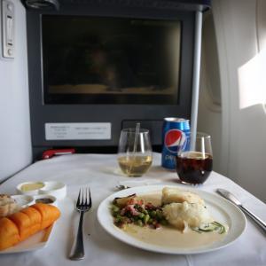 ANAビジネスクラス搭乗記 : 羽田 → ニューヨーク (NH110 / HND-JFK / Business Class) 2019年/12月