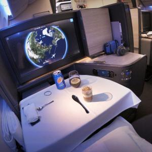 2020年!ANA『THE Room』ニューヨーク便・搭乗記! : 成田 → ニューヨーク (NH10 / NRT-JFK / Business Class)