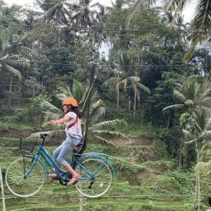 空飛ぶ自転車!
