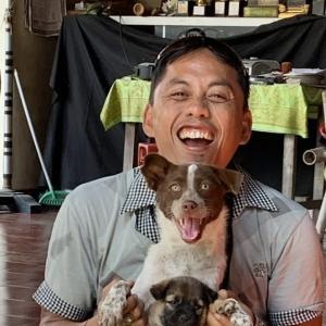 バリ犬とキンタマーニ犬