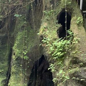 龍の住む滝