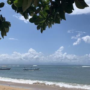 コロナなのに、サヌールビーチのカフェに観光客!嬉しい