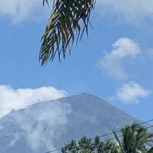 綺麗なアグン山