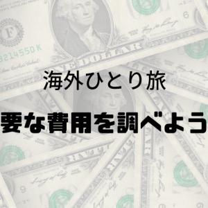 【海外一人旅の費用】国別にかかる費用の内訳を計算してみた。
