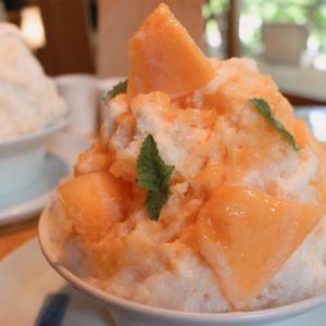 定山渓温泉の100日限定営業「森乃百日氷」で初氷(生メロン)食べてきました♡