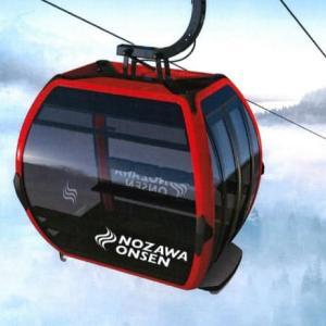 一部の人気のあるスキー場だけ