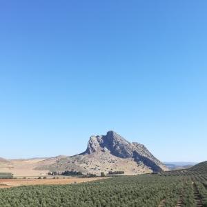 セビリアやマラガからの小旅行に。アンテケーラの紹介