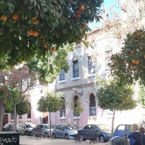 セビリアのオレンジと春の香り
