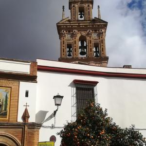 おすすめセビリア土産 修道院Santa Paulaのマーマレード