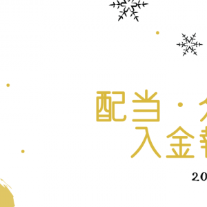 【配当・分配入金報告】ピジョンからの配当と、投資信託からの分配で合計3,673円(2019年11月分)
