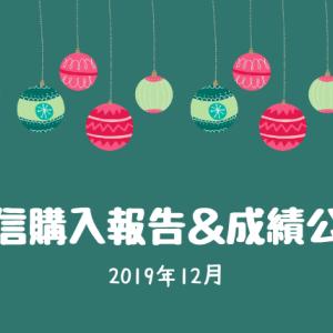 【投信購入報告・成績公開】2019年12月分の積立状況!インデックス投資の安心感と強さを実感