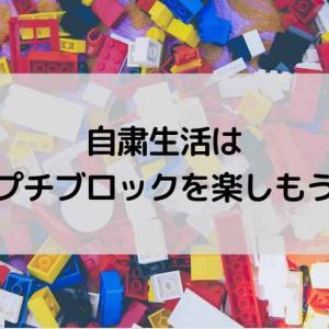 【100均のプチ(ミニ)ブロック】ダイソーやセリアのブロックが種類豊富でコスパ良く楽しめる!
