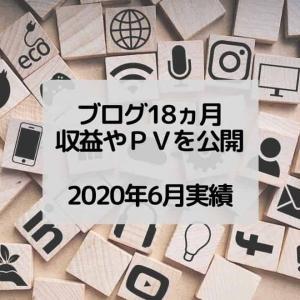 【雑記ブログ報告】素人が18ヵ月(1年6ヵ月)継続したPVや収益を公開