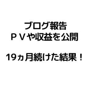 【雑記ブログ報告】初心者が19ヵ月(1年7ヵ月)継続した結果!
