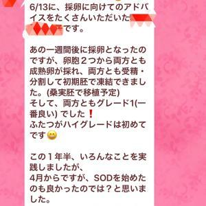 【吉報・速報】46歳2ヶ月でも最高グレードの受精卵が採れた!!!