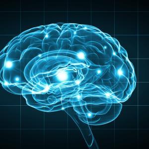 脳の休め方