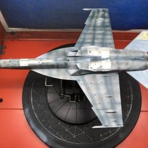 ハセガワ 1:72 F/A-18E スーパーホーネト 製作記 Vol.21