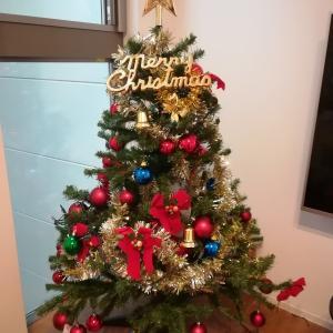 やっと飾ったクリスマスツリー!!