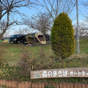 2月のキャンプ