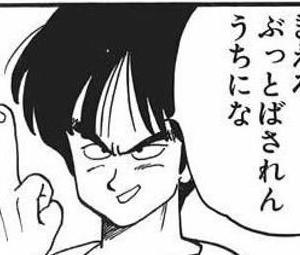 ~ヤムチャ戦いの歴史~戦績まとめ