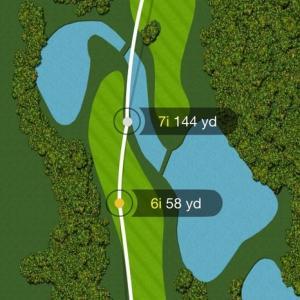 【定年ゴルフはボールが命】定番の高級ボールを使って分かったこと~タイトリストpro V1~