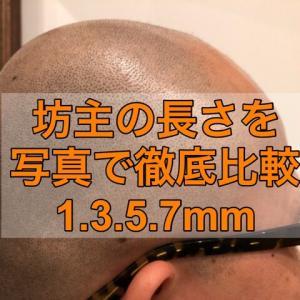 【坊主頭歴5年の僕が解説】坊主の長さを写真で徹底比較 1,3,5,7mm