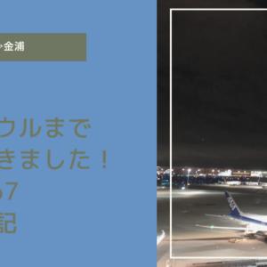 【羽田→金浦線搭乗記】ANAで韓国ソウルに行ってきました!やっぱり機内食は美味しい!ANA867便
