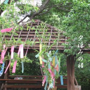 笹の葉さらさら夕涼みの裾