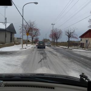 雪降って溶けたが