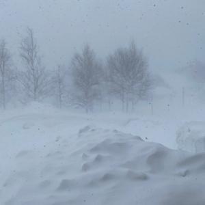 吹雪の日は、ステッチの日