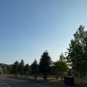 北海道4日目 名古屋より暑い
