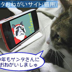 猫漫画「サンタお願いサイト」