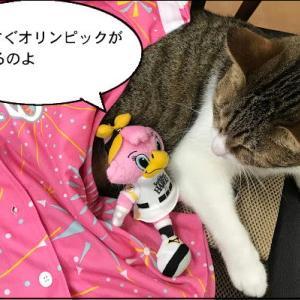 猫漫画「ネコリンピックに向けて猛練習」