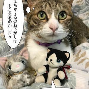 猫漫画「新幹線の精霊馬に乗って帰ってきた」