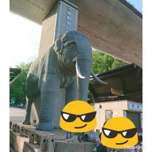 多摩Zoo