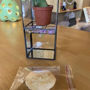台中グルメ 優しい甘さサクサク太陽餅『意縁食品』台中名産品焼き菓子太陽餅