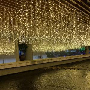 台中散歩 毎日がクリスマス!煌びやかなイルミネーションの遊歩道『柳川水岸』