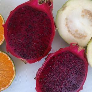 芭楽紅龍果柳橙汁!沖縄県産グアバ&ドラゴンフルーツ&みかんの自家製ジュース
