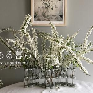 花のある暮らし〜4月の花器で脇役のユキヤナギを主役に