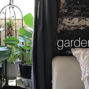 お庭のよう!ガーデンの中のリビング〜シェードガーデン模様替え