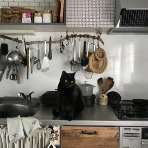 パリ風キッチンの見せる収納隠す収納
