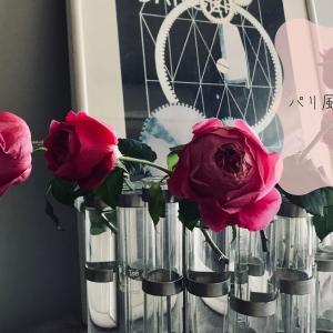 50代パリ風ライフスタイルと花のある暮らし〜秋ばらを楽しむ