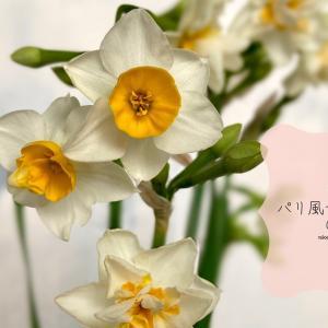 花のある暮らし〜小さな花器で春を先取り