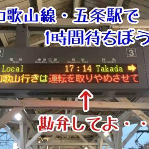 【豪雨】JR和歌山線の五条駅で1時間足止めを喰らった日