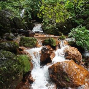 【北海道】斜里岳登山・沢登りのような百名山・清岳荘から往路旧道・復路新道コース