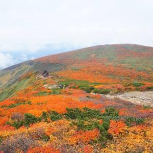 【宮城】紅葉の栗駒山日帰り登山(東栗駒コース入山/中央コース下山)