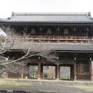 秀吉の紀州攻めで根来寺の大伝法堂・大門が焼けずに残り、解体されたのはなぜか
