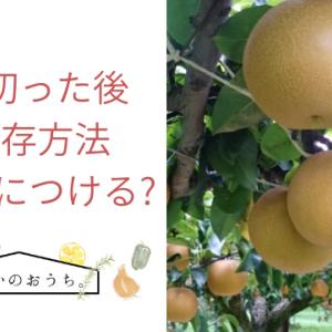 梨を切った後の保存方法 砂糖水につける?
