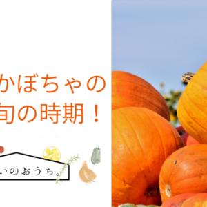 鹿ケ谷かぼちゃの特徴や旬の時期!食感はネットリで甘みは少ない